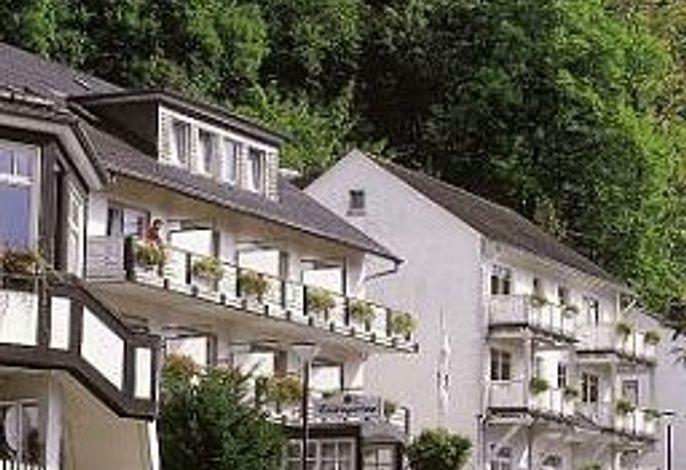 Parkhotel Schmallenberg