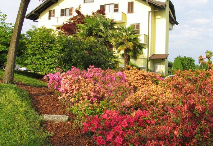 Isotta Albergo & Residence