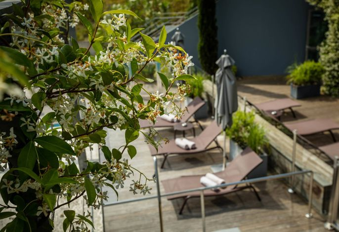 Courtyard Montpellier