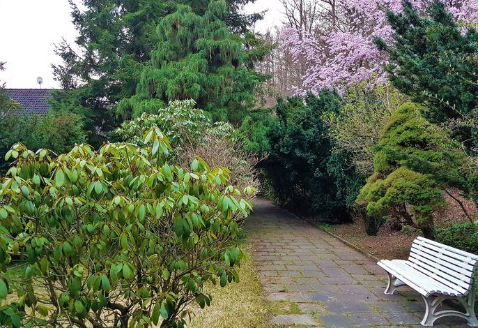 Siegerland Haus im Walde