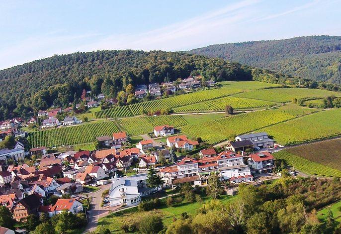 Südpfalz-Terrassen