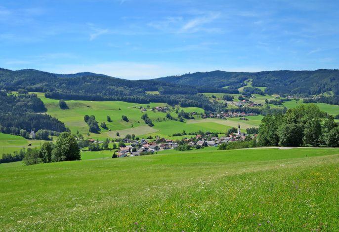 Waldfrieden (MON261)