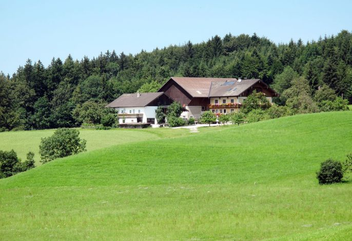 Bauernhof Vorderroid (MON401)