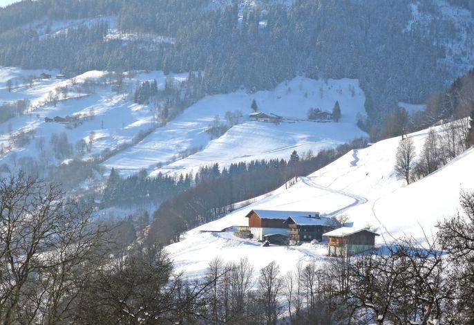 Angererhof (PID250)