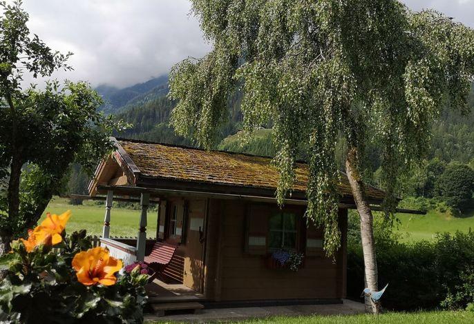 Ferienhaus Wildkogel