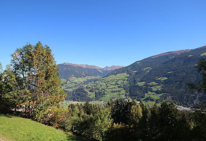 Dornauer