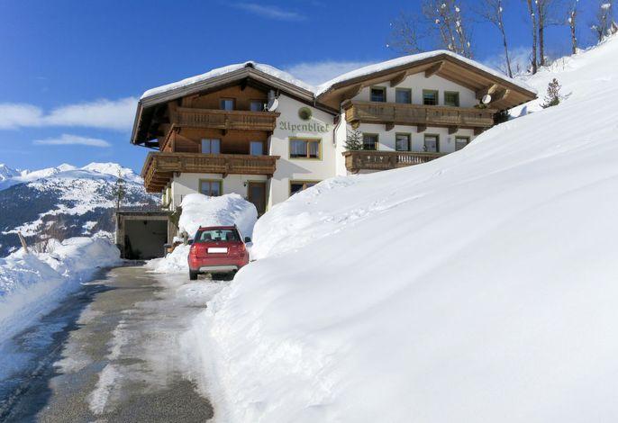 Alpenblick (ZAZ384)