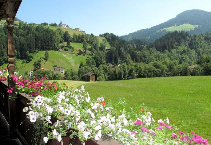 Oberweissbach (WIL315)