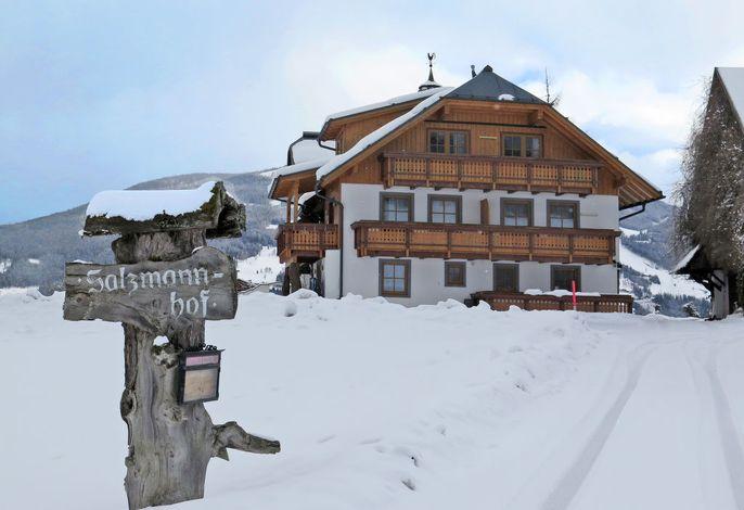 Salzmannhof (RMU210)