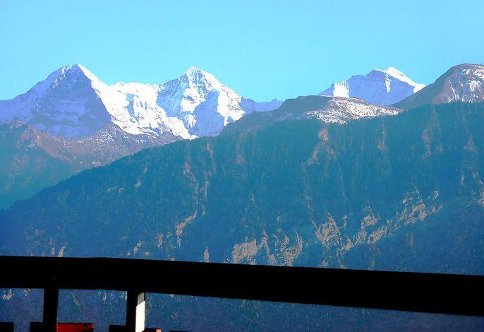 Berg-Seeblick