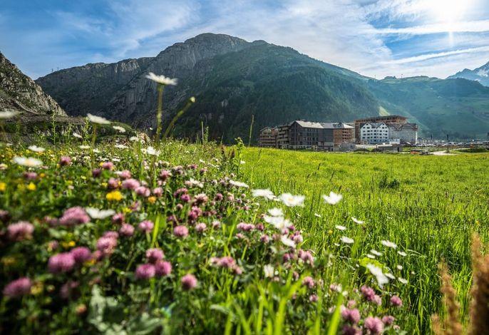 Andermatt Alpine Apartments