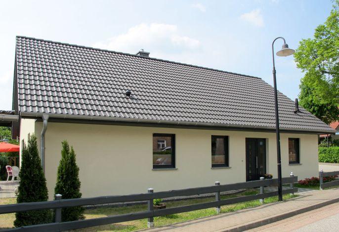 Johannika (GDR100)