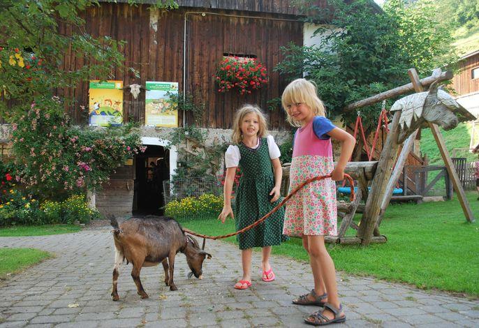 Spaziergang mit unserer Ziege Susi