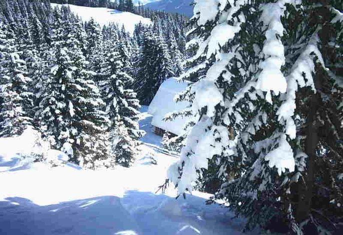 Hüttendach im Winter, Blick von Piste