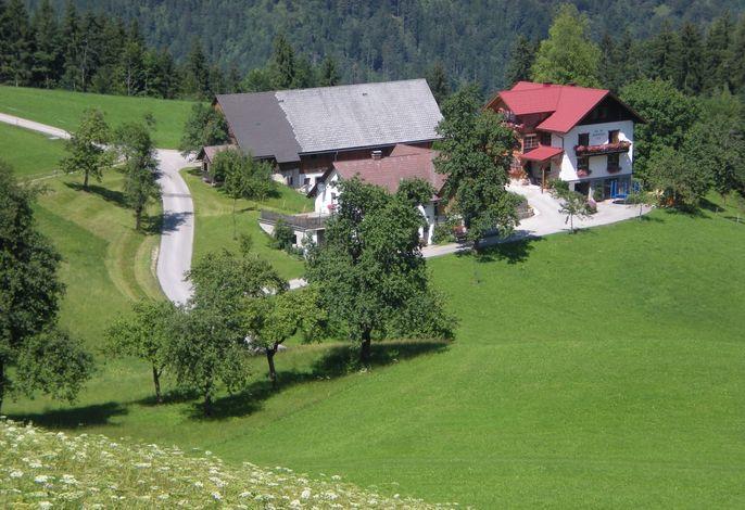 Der Hofname Salcheck - früher Salleck - wurde erstmals im Jahre 1305 im Freisinger Urbar urkundlich erwähnt