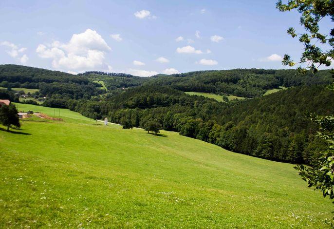 Waldhof Grasel - Umgebung