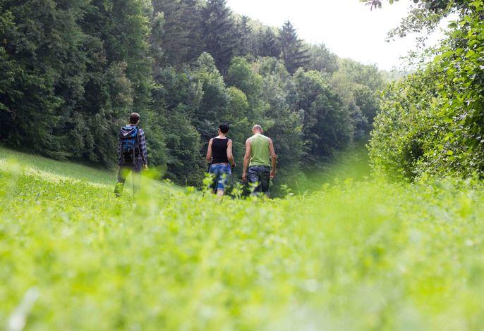 Waldhof Grasel - Wandern