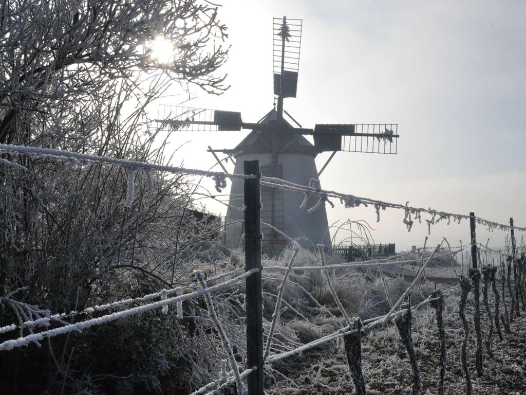 Windmühle in Retz, Raureif