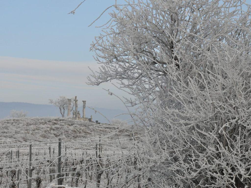 Winterlandschaft in Retz