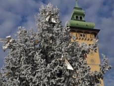 Winter in Retz, Rathaus