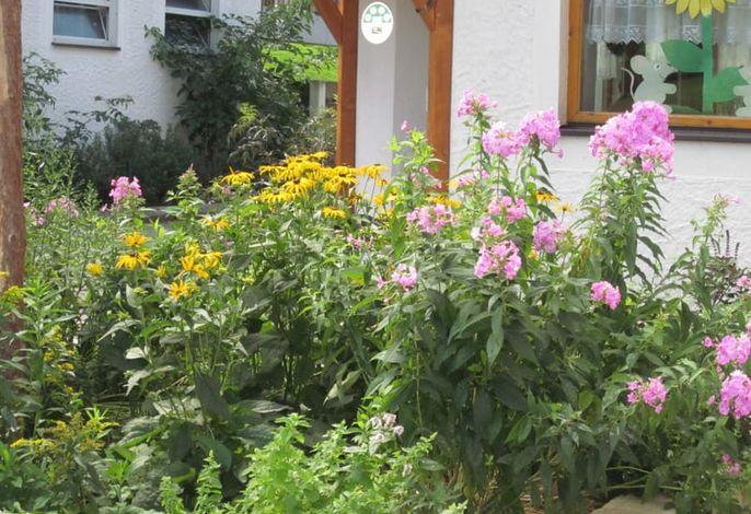 Zwergerlhof - Das ist der Kräutergarten vor unserer Haustüre