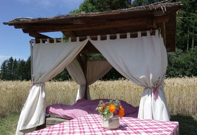 Kräuterbett im Kornfeld