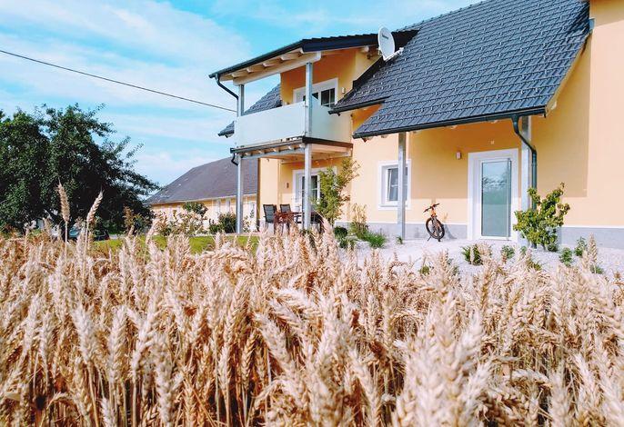 Presshaus mit Weizenfeld2
