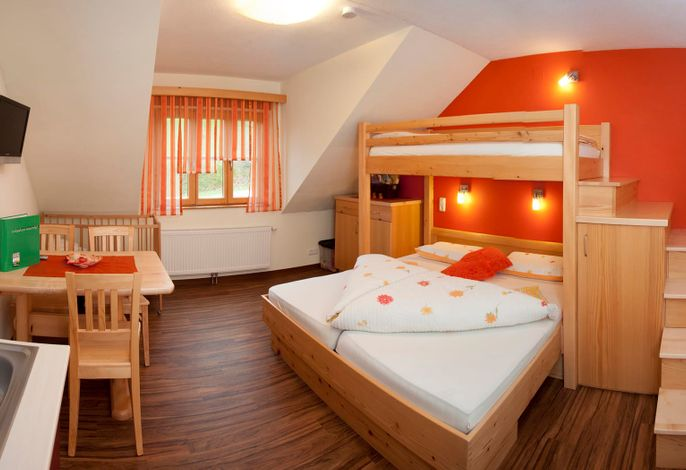 Wohn-schlafzimmer des Apartment
