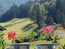 Bio-Bauernhof Vorderbärnau