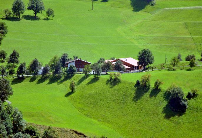 Unser Hof befindet sich auf einer Anhöhe in Alleinlage umgeben von Wiesen und Wälder
