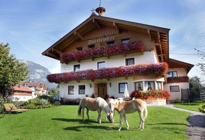 Breitenhof - Pferde im Garten