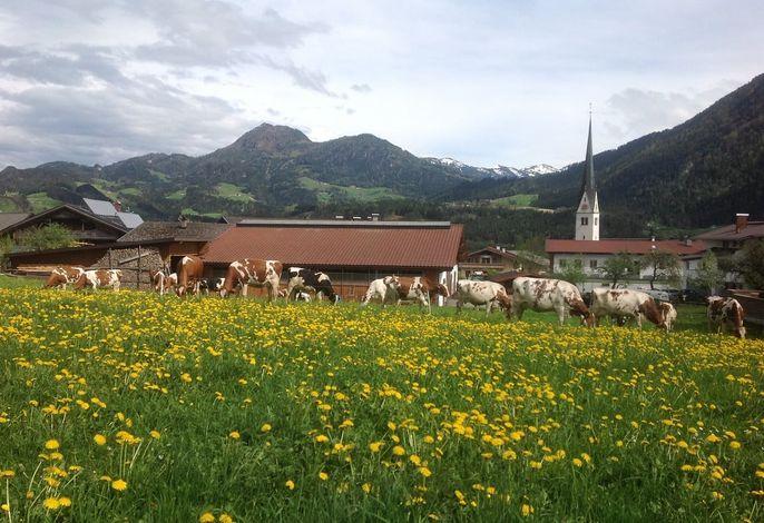 Denggalahof