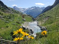 Sommer-Wandern in den Bergen