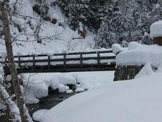 Naturschnee/ Winterwandern