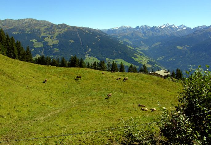 Panorama Blick ins Zillertal