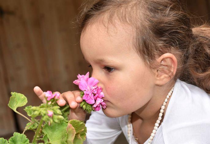 Kinder erfreuen sich an den Pflanzen und Tieren am Hof.