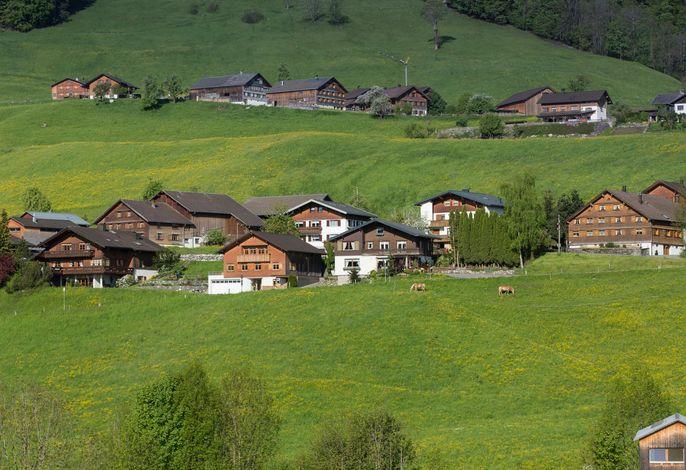 Haus Elfriede Bregenzerwald