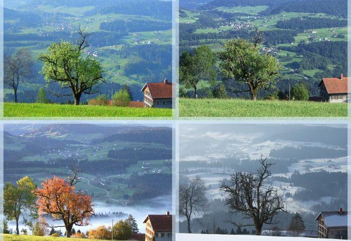 Im Wechsel der Jahreszeiten