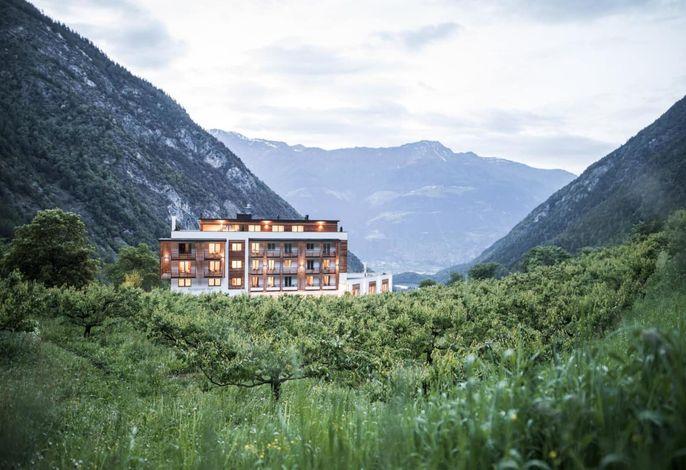 Hotelansicht Burgaunerhof