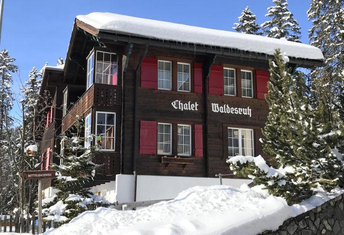 Chalet Waldesruh (3 ZWhg.)