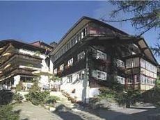 Hotel Garni Adler Hirschegg