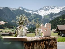 Pension Strubeli Adelboden