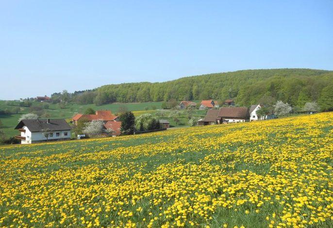 Ferienwohnung Öttersbach