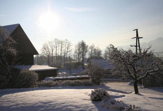 Urlaub am Bauernhof - Pension Borchardt