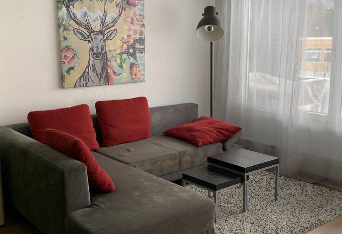 Haus Rhodania/Horner