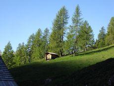 Almhütte Thalefeld - Lanser Erwin