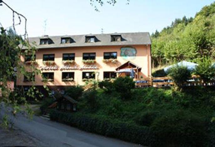 Waldhotel Albachmühle