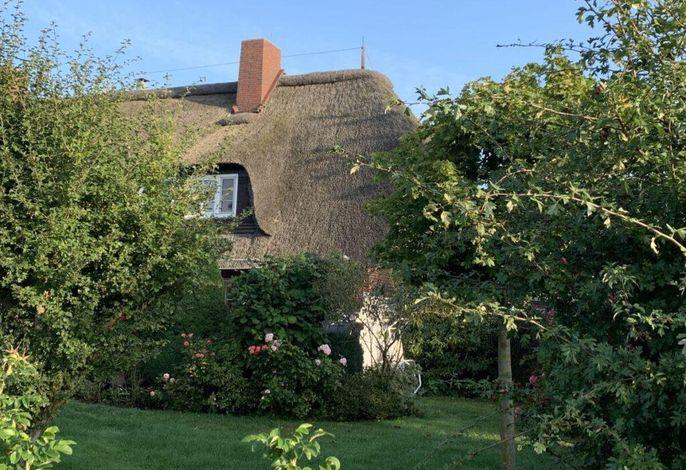 Reetdachhaus Nordseebrise