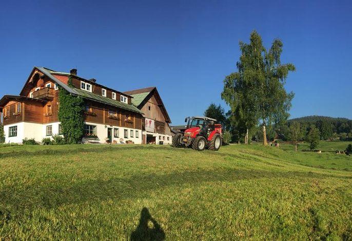 Burglehnerhof