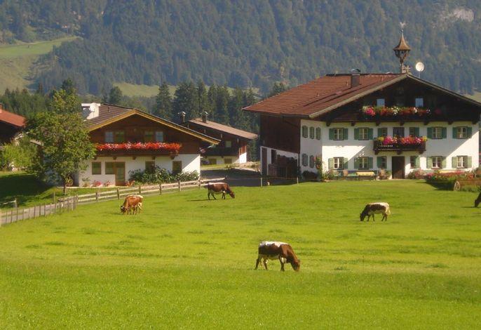 Bauernhof Ellmerer - Familie Mühlberger